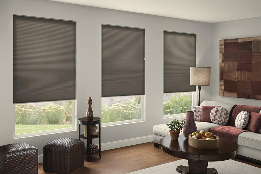 Cellular-Shades-Baritone-Light-Filtering-Java-1469-Living-Room